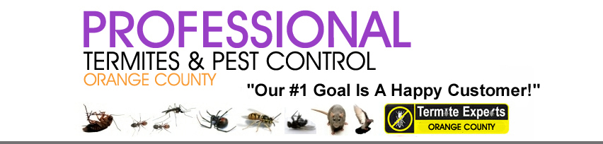 Pest Control Orange County Ca Pest Control Orange County